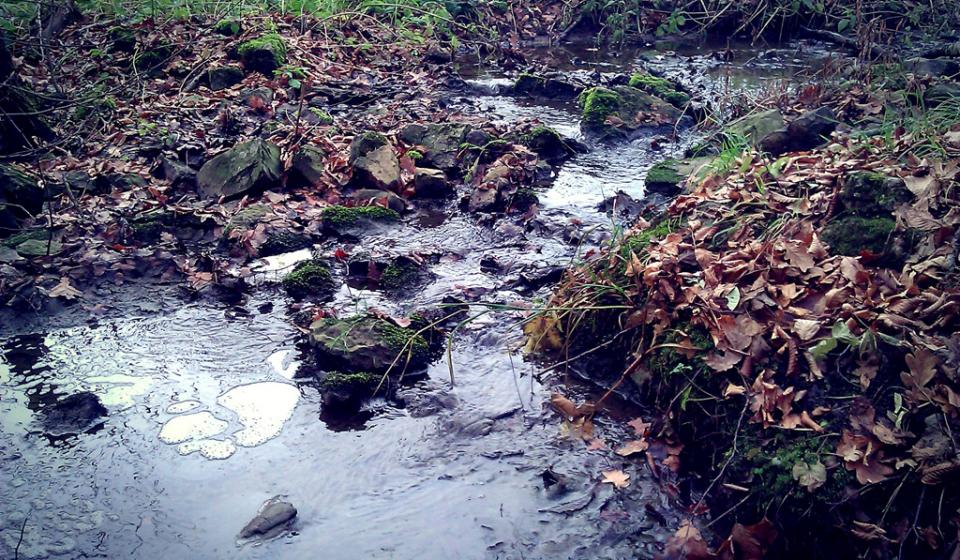 0-cesta_k_bubovicke_vodopady